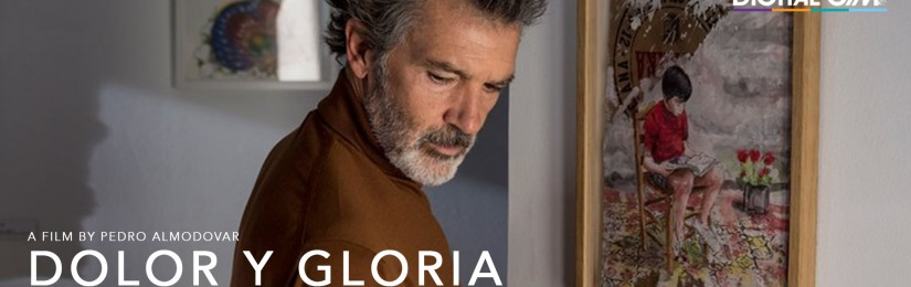 Last Chance Indies: Dolor y gloria  (November 29 – January 23)