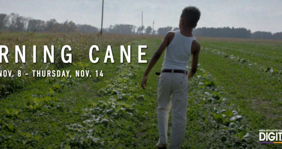 ARRAY Presents: Burning Cane (November 8 – November 14)